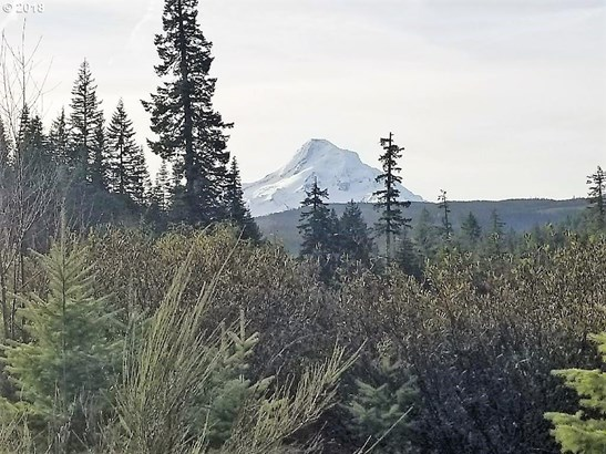 Berry Dr, Mt Hood-parkdale, OR - USA (photo 2)
