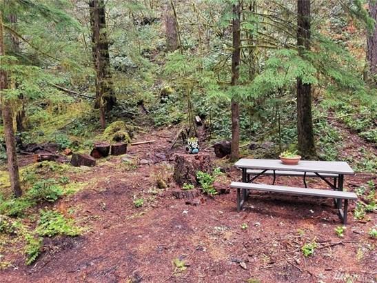 141 Northwoods, Cougar, WA - USA (photo 3)