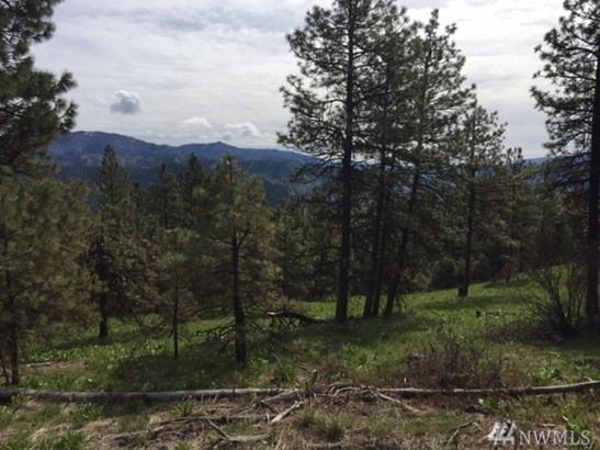 94 Mountain Home Rd, Leavenworth, WA - USA (photo 1)