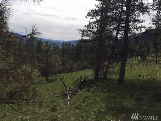 94 Mountain Home Rd, Leavenworth, WA - USA (photo 4)