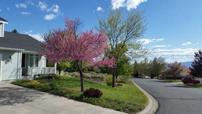 495 Havencrest Court, Klamath Falls, OR - USA (photo 2)