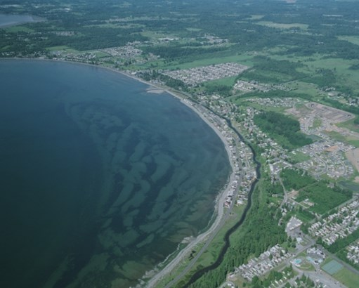 Tour of birch bay (photo 4)