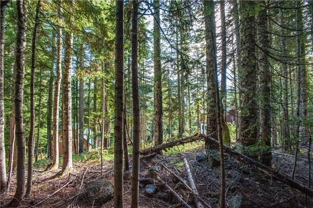 1 Innsbruck Dr Lot77, Snoqualmie Pass, WA - USA (photo 5)