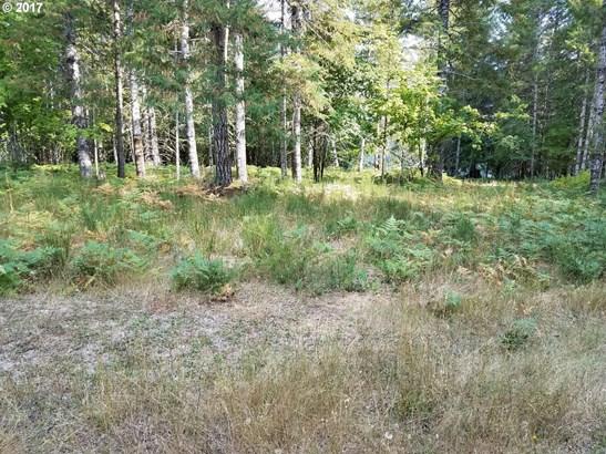 Null, Cougar, WA - USA (photo 3)