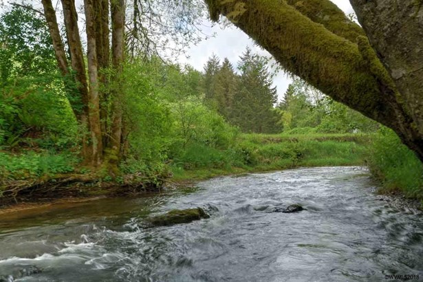 54795 Sw Hebo Rd, Grand Ronde, OR - USA (photo 4)