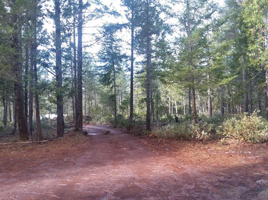 710 Naue Way, O Brien, OR - USA (photo 4)