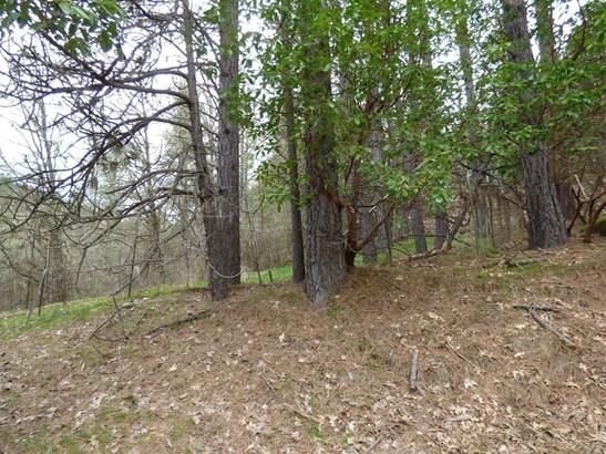 18505 E Evans Creek Road, Rogue River, OR - USA (photo 3)