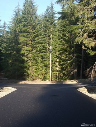 260 Tanner Wy, Snoqualmie Pass, WA - USA (photo 2)