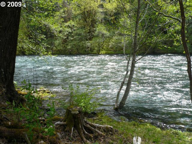 55652 Mckenzie River Dr, Blue River, OR - USA (photo 5)