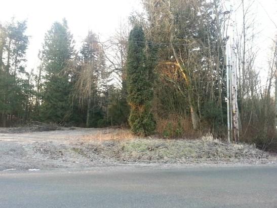 155 Tremont Ave, Bellingham, WA - USA (photo 1)