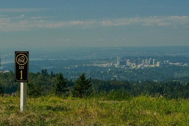 17168 Se 64th Ct Lot 6, Bellevue, WA - USA (photo 3)