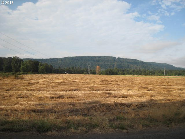 M J Chase Rd, Springfield, OR - USA (photo 2)