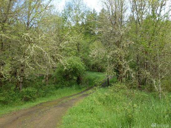 355 Lost Valley Rd A, Boistfort, WA - USA (photo 4)
