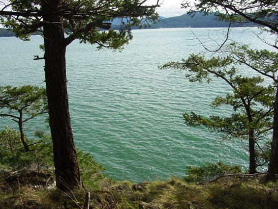 0 rebe road, orcas island (photo 5)