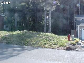 Buena Vista Lot 33, Arch Cape, OR - USA (photo 4)