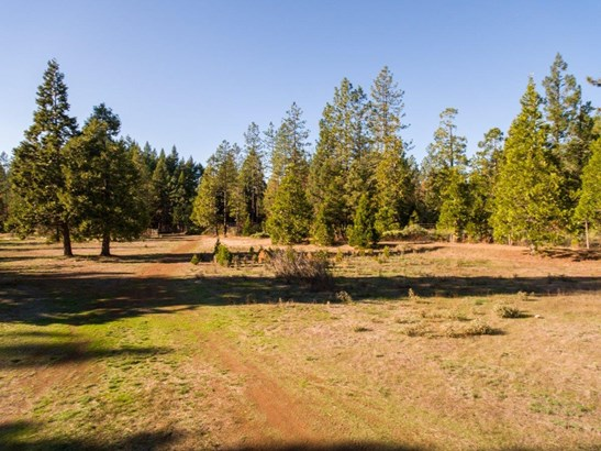 32577 Redwood Highway, O Brien, OR - USA (photo 3)