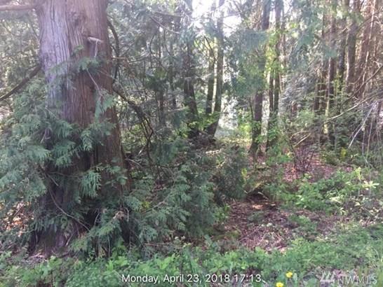 12812 E Lake Dr, Sedro Woolley, WA - USA (photo 1)