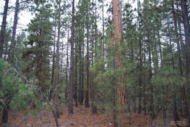 14801 Springwood Road, La Pine, OR - USA (photo 4)
