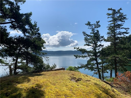 White beach road, orcas island (photo 4)