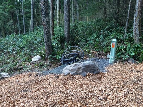 White beach road, orcas island (photo 5)