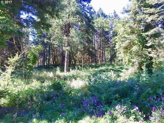 Windsong Ct, Stevenson, WA - USA (photo 1)