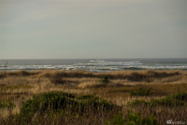 70 Dunes Lane, Ocean City, WA - USA (photo 2)
