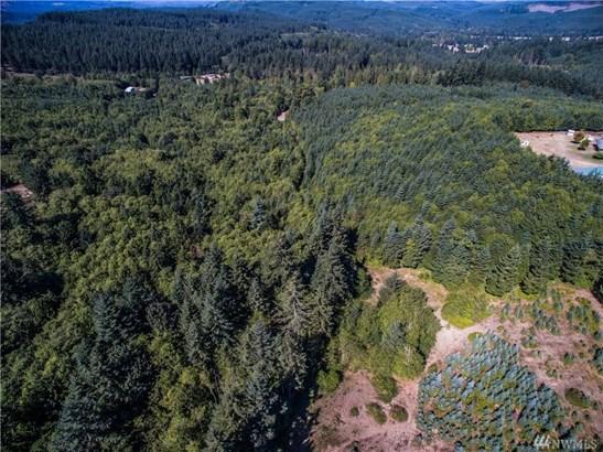 0 Twins Lane, Castle Rock, WA - USA (photo 1)