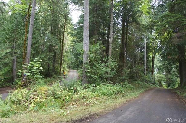 31 N Bow Tree Lane, Lilliwaup, WA - USA (photo 1)