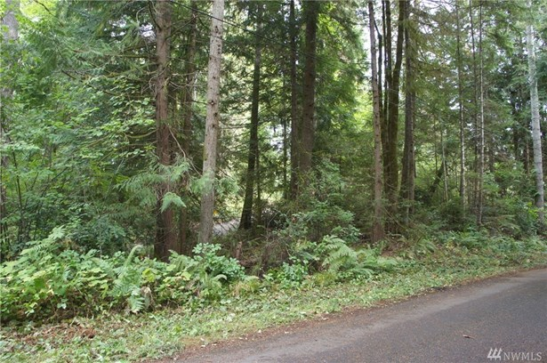 31 N Bow Tree Lane, Lilliwaup, WA - USA (photo 4)
