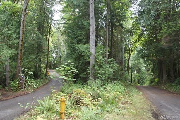 31 N Bow Tree Lane, Lilliwaup, WA - USA (photo 5)