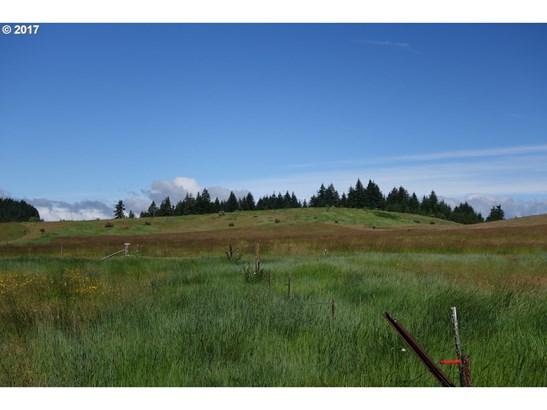 Reilly-mcgray Rd, White Salmon, WA - USA (photo 2)