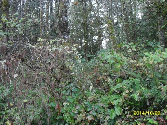 12784 Eastbrook Dr Sw, Port Orchard, WA - USA (photo 2)