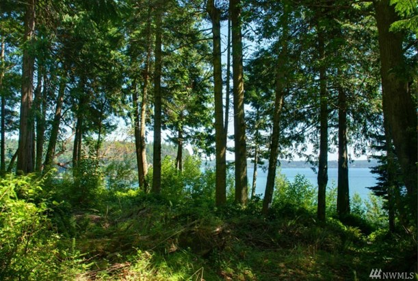5373 Paradise Bay Rd Ne, Port Ludlow, WA - USA (photo 4)
