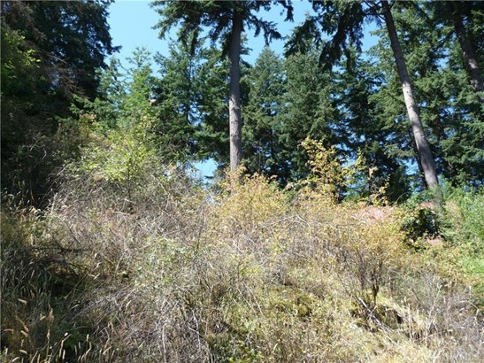 2963 Dogwood Terr, Lummi Island, WA - USA (photo 1)