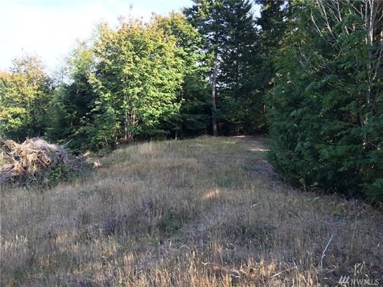 0 Shar Lane, Lilliwaup, WA - USA (photo 2)