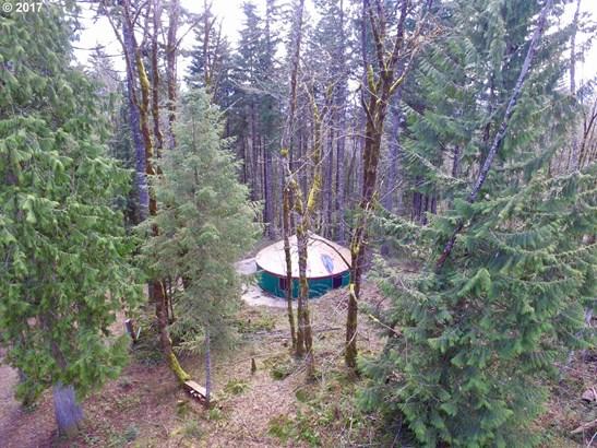 Camp Cedars Ln 3, Stevenson, WA - USA (photo 1)