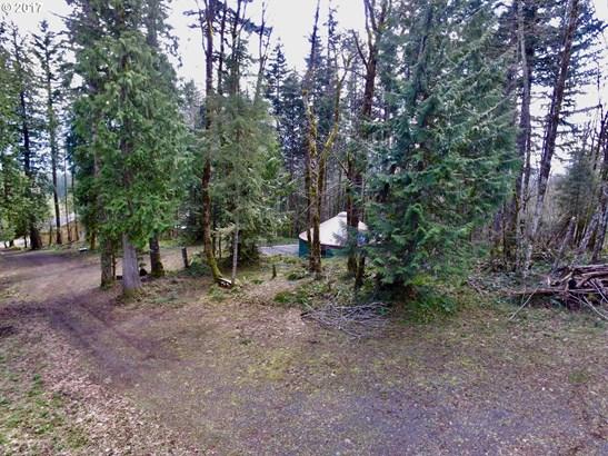 Camp Cedars Ln 3, Stevenson, WA - USA (photo 3)