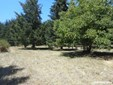 7744 Fanny Ln, Aumsville, OR - USA (photo 1)