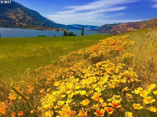 River View Dr, Lyle, WA - USA (photo 1)