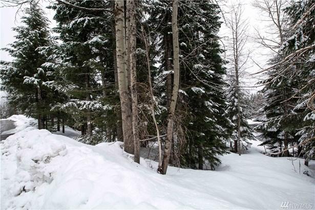 10 Snoqualmie Dr, Snoqualmie Pass, WA - USA (photo 4)