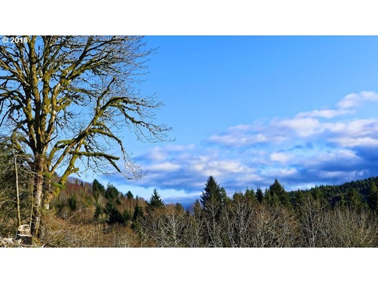 E Beaver Creek Rd, Cloverdale, OR - USA (photo 2)