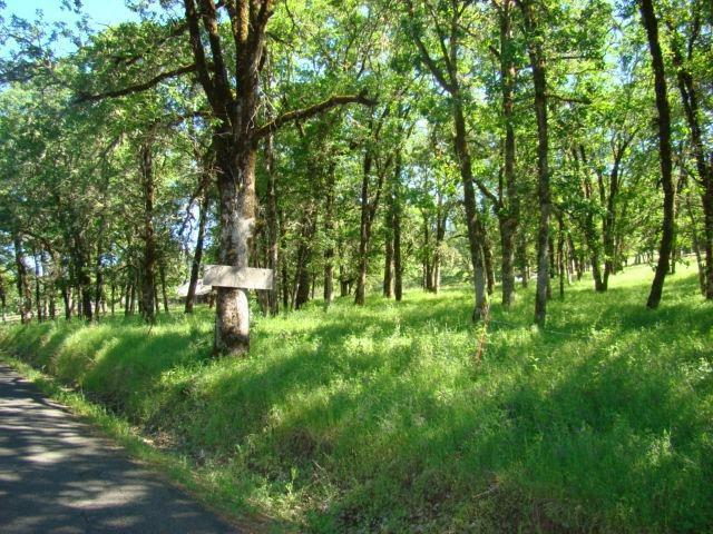 2601 Indian Creek Road, Shady Cove, OR - USA (photo 5)