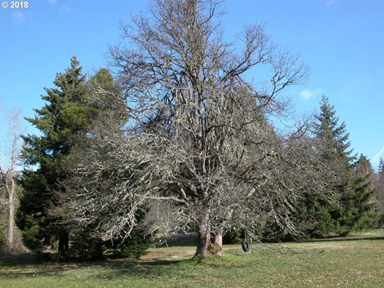 Klm Dr, Mt Hood-parkdale, OR - USA (photo 3)
