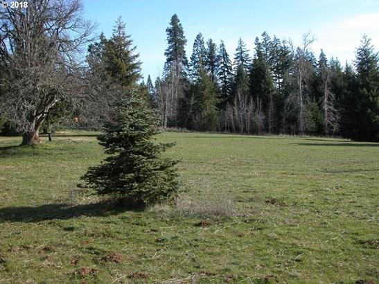 Klm Dr, Mt Hood-parkdale, OR - USA (photo 5)