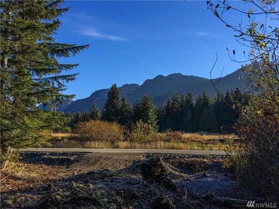811 Hyak Dr E, Snoqualmie Pass, WA - USA (photo 4)