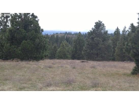 Mt. View Rd, Lyle, WA - USA (photo 1)