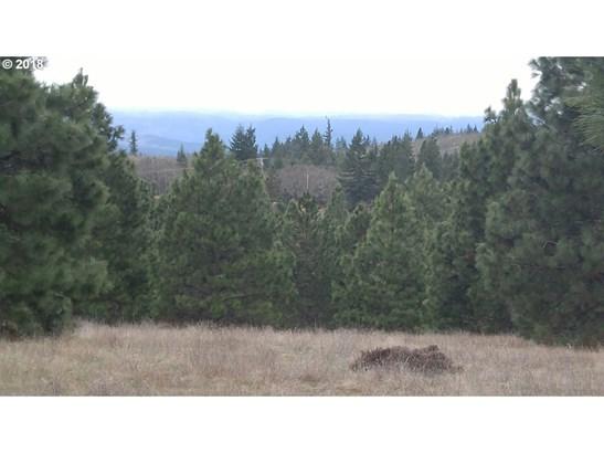 Mt. View Rd, Lyle, WA - USA (photo 3)
