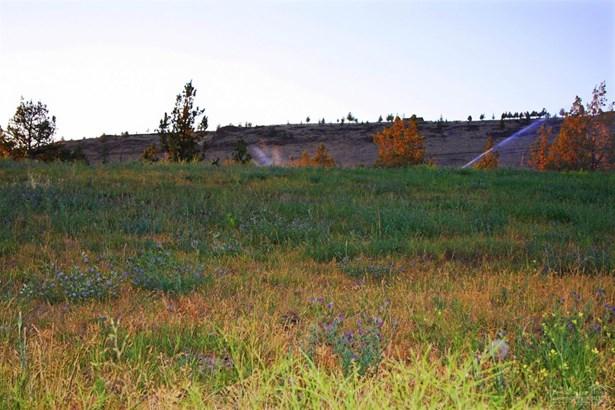 3196 Southeast Gravy Gulch Way, Prineville, OR - USA (photo 3)
