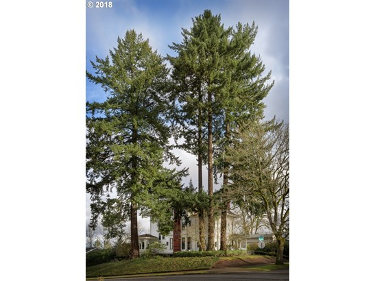 2030 Sw Vista Ave, Portland, OR - USA (photo 2)