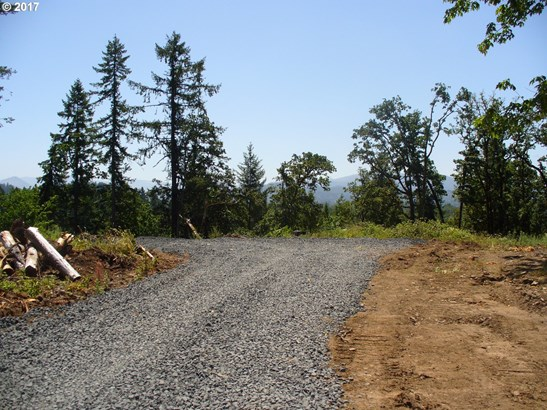 Wallace Creek Rd 1, Pleasant Hill, OR - USA (photo 1)